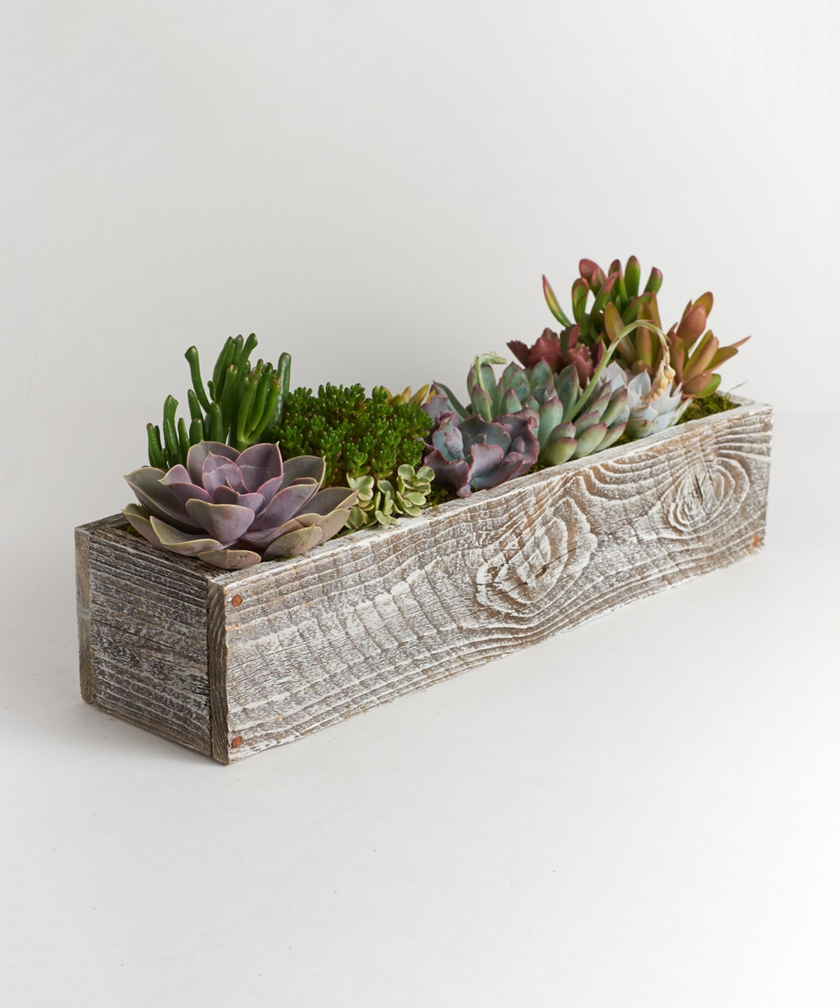 Kimberlee Wood Rectangle Planter With Succulents
