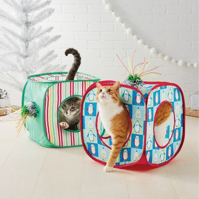 Holiday Cube – 2-Pack
