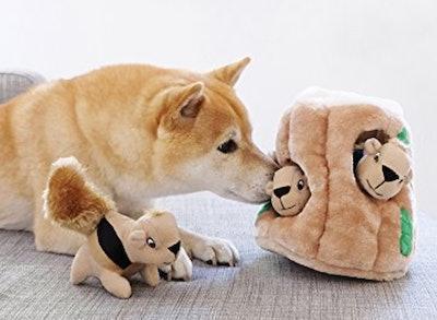 Outward Hound Hide-A-Squirrel Puzzle Plush Squeaking Toy