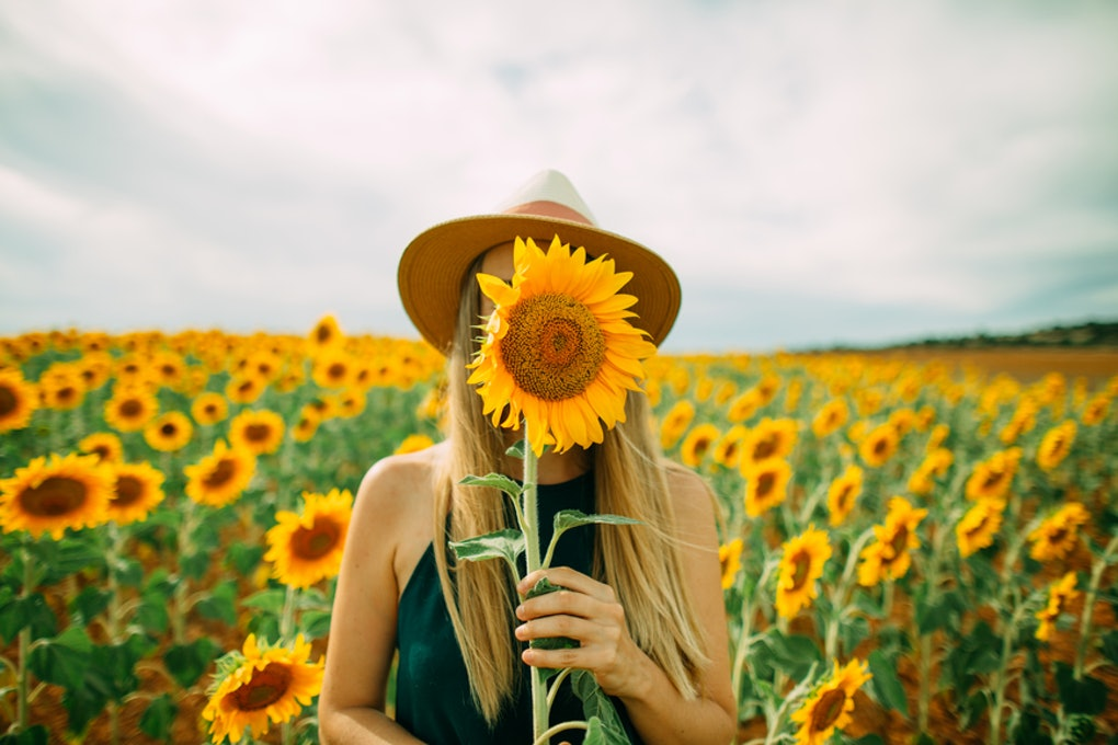 23 Instagram Captions For Sunflowers Thatll Instantly Brighten Up