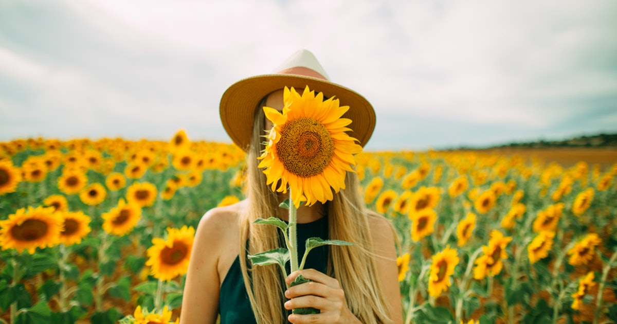 23 Instagram Captions For Sunflowers That Ll Instantly Brighten Up Your Day