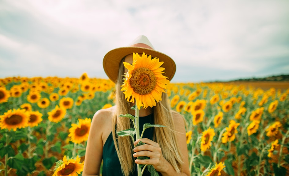 23 instagram captions for sunflowers thatll instantly brighten up 23 instagram captions for sunflowers thatll instantly brighten up your day mightylinksfo