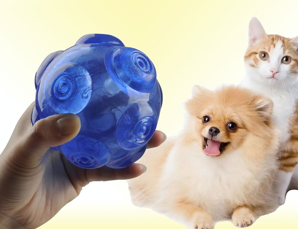 7 Indestructible Squeaky Dog Toys