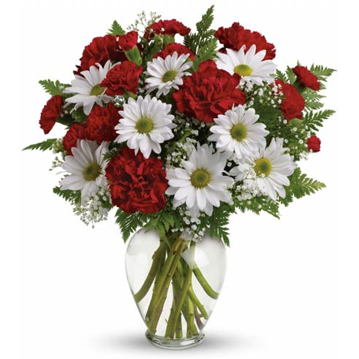 Simple Love Bouquet Of Daisies