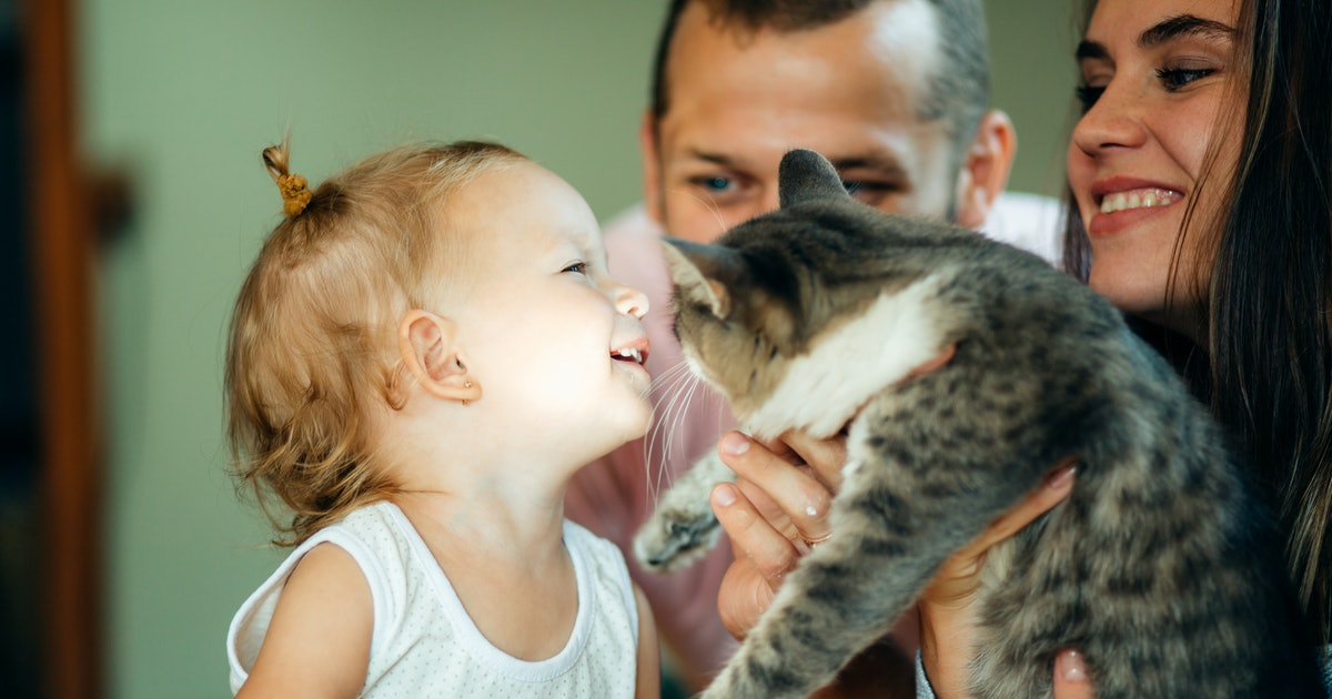 I Refuse To Lie To My Kid About The Death Of A Pet