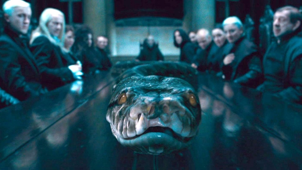 This 'Fantastic Beasts' Nagini Theory Will Literally Make