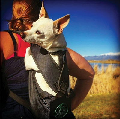 Ruffit Dog Carrier