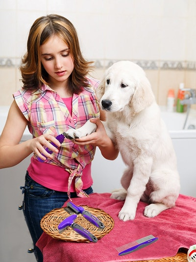 Electric Pet Nail Trimmer