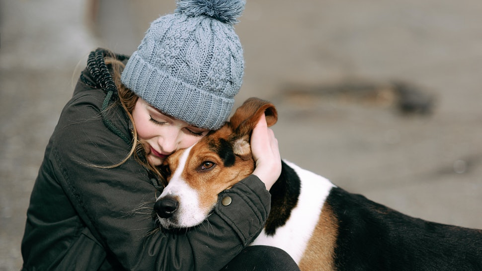 15 Mistakes People Make In The First Month After Adopting A Dog