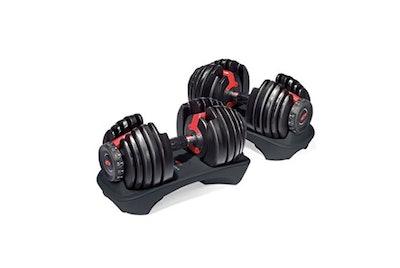 Bowflex, SelectTech 552 Adjustable Dumbbells