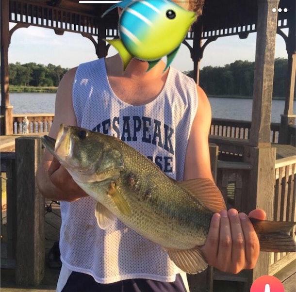 dating app fish