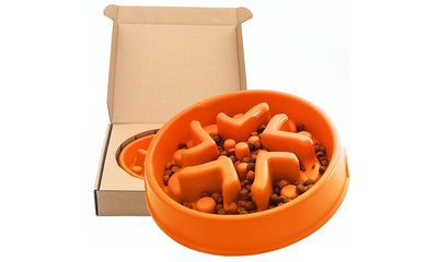 Simply Pets Online Slow Feeder Bowl