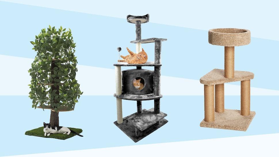 38491e2789c9 The 6 Best Cat Trees
