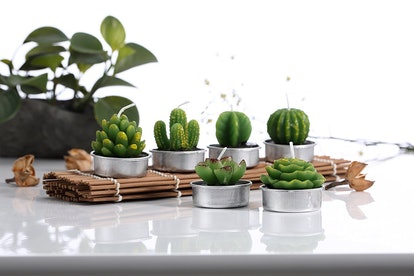 Okay, so clearly these are not real plants; they're not even fake plants. These little cacti-shaped candles are perfect for those who want something that is both cute and useful. Scatter them around an outdoor patio table for a sweet candlelit dinner during the summer, or line them up on the side of your bathtub.