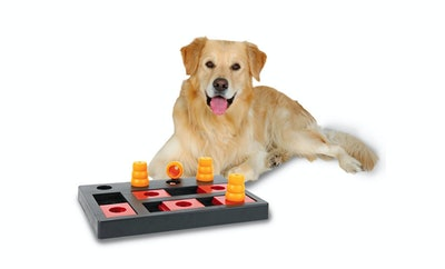 TRIXIE Pet Products, Training Games