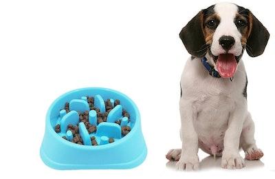 Oodtpet, Fun Feeder Slow Dog Bowl