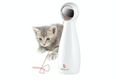 PetSafe Bolt Interactive Laser Cat Toy