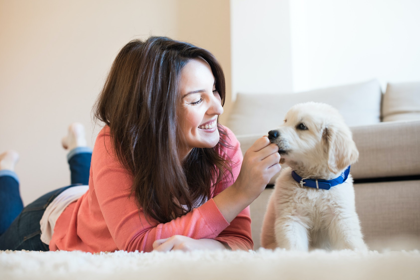How Do Emotional Support Animals Help People? 7 Benefits Of ESAs