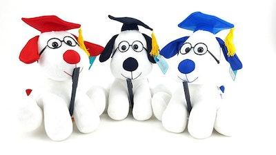 Graduation Dog With Autograph Pen
