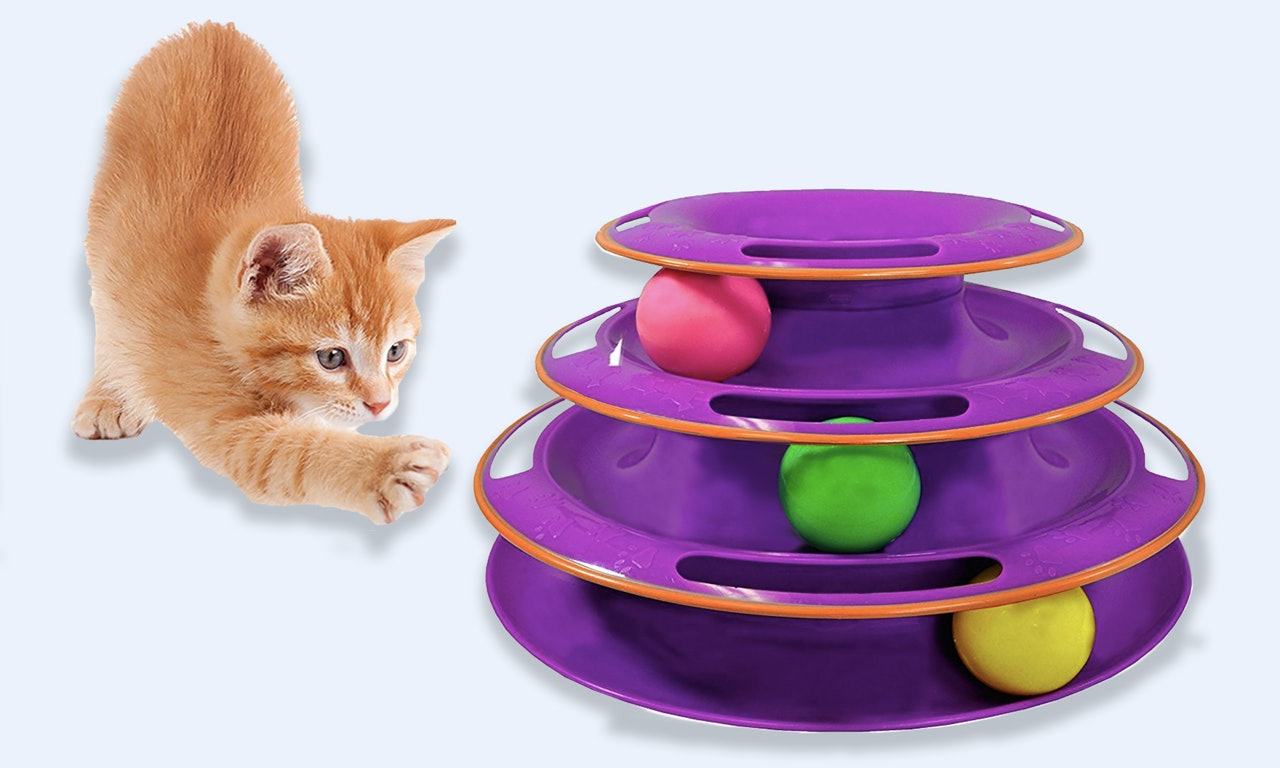 the 8 best cat toys to keep them busy
