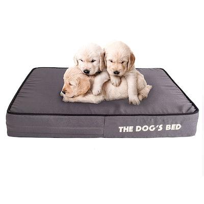 The Dog's Balls Waterproof Orthopedic Memory Foam Dog Bed