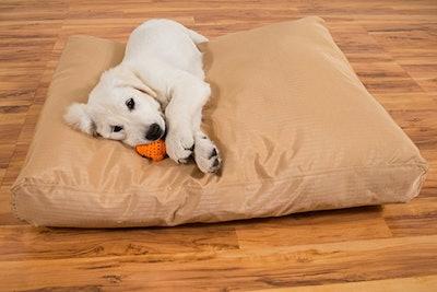 K9 Ballistics Original TUFF Dog Bed