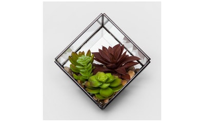 Artificial Succulent in Terrarium