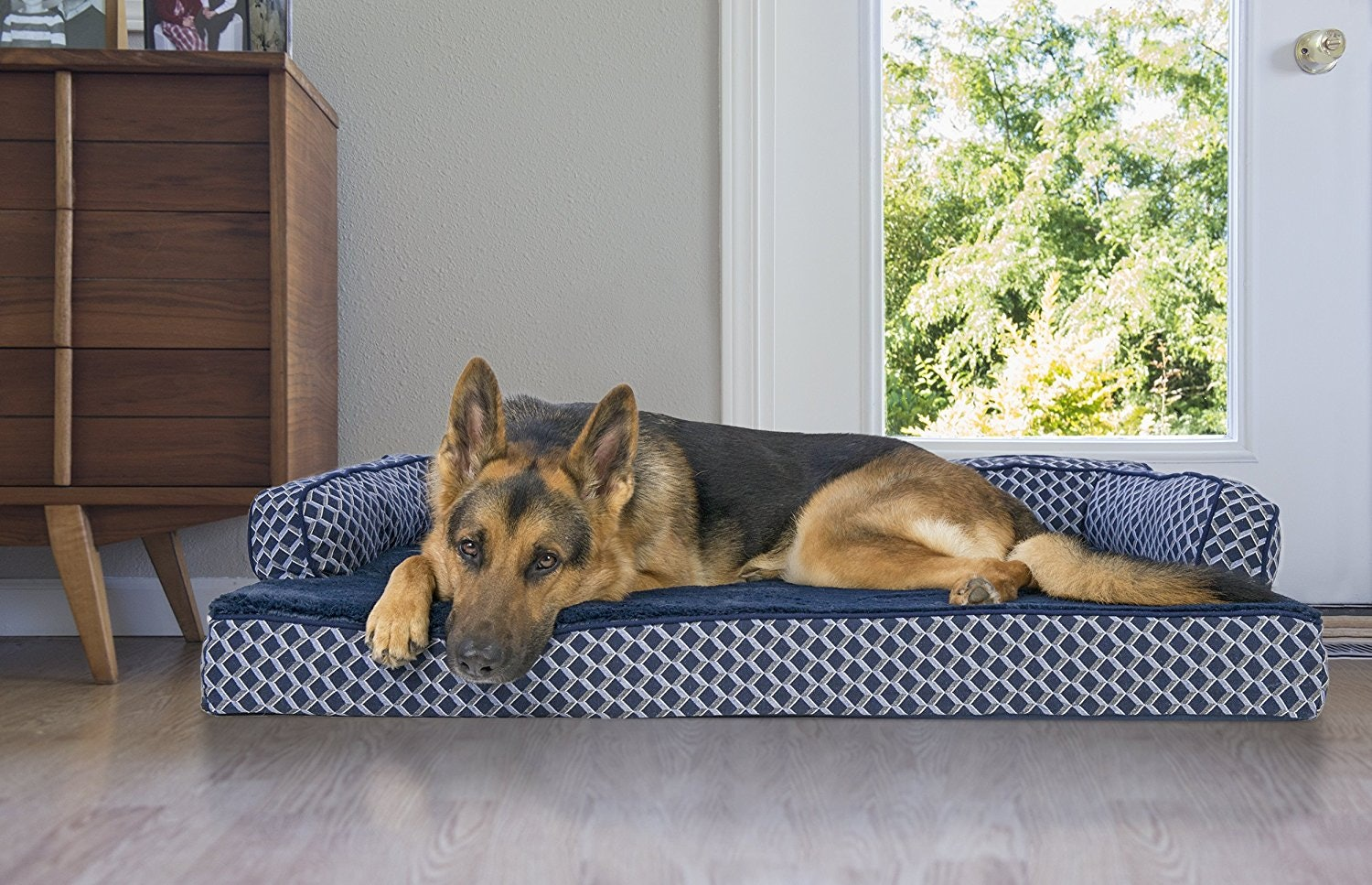 The Best Dog Beds For Older Dogs
