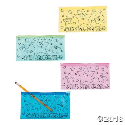 Star Student Pencil Cases