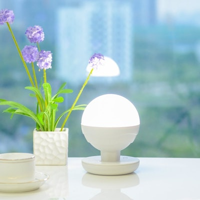 ANNT Multifunctional Portable Lamp