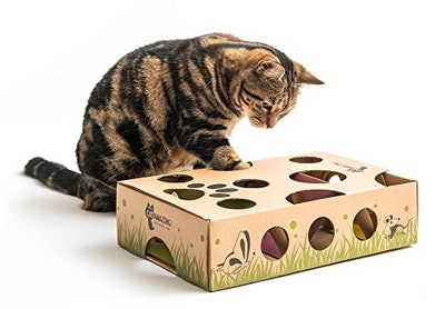 Cat Amazing Maze And Puzzle Feeder