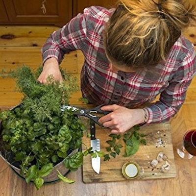 Grow Your Own Herbs Garden Seedsheet