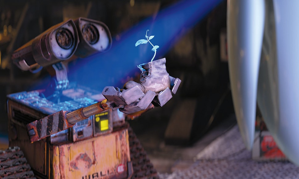 Image result for image wall-e plant