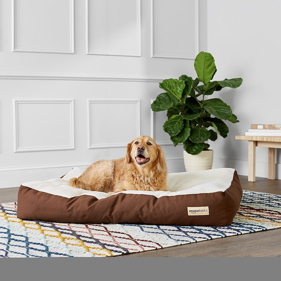 The 7 Best Dog Beds For Large Dogs