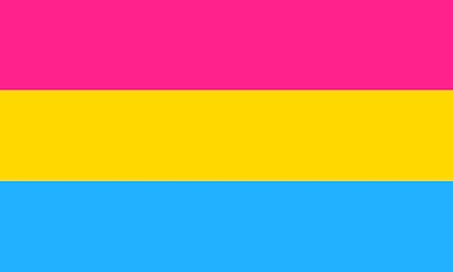 A pansexual pride flag: pink, yellow, and blue.