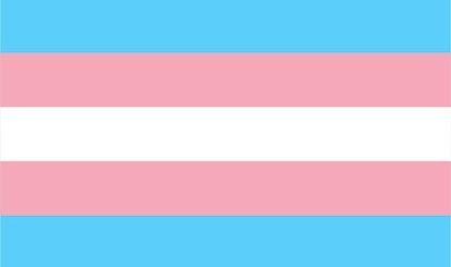 The Transgender Pride flag: 5 stripes of blue, pink, white, pink, and blue.