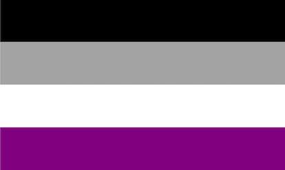 The asexual pride flag: black, gray, white, purple.