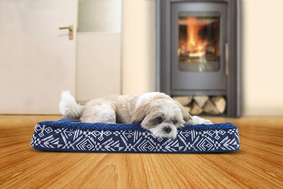 The 6 Best Orthopedic Dog Beds