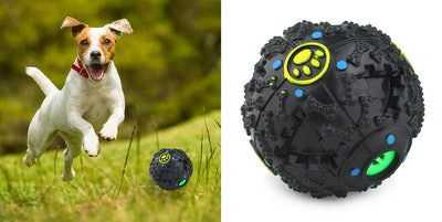Furry Fido Interactive Dog Ball