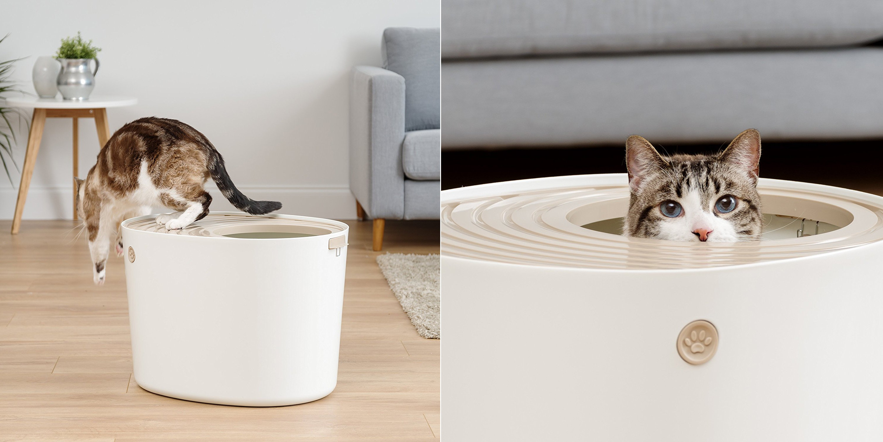 Image Covered Cat Litter Inside The Best Covered Cat Litter Boxes
