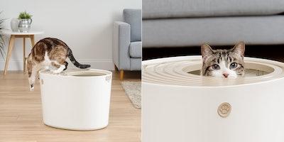 IRIS Top-Entry Cat Litter Box