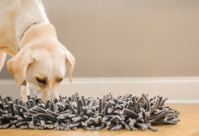 PAWS Wooly Snuffle Mat