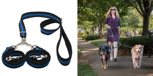 The 7 Best Dog Leashes For Big Dogs