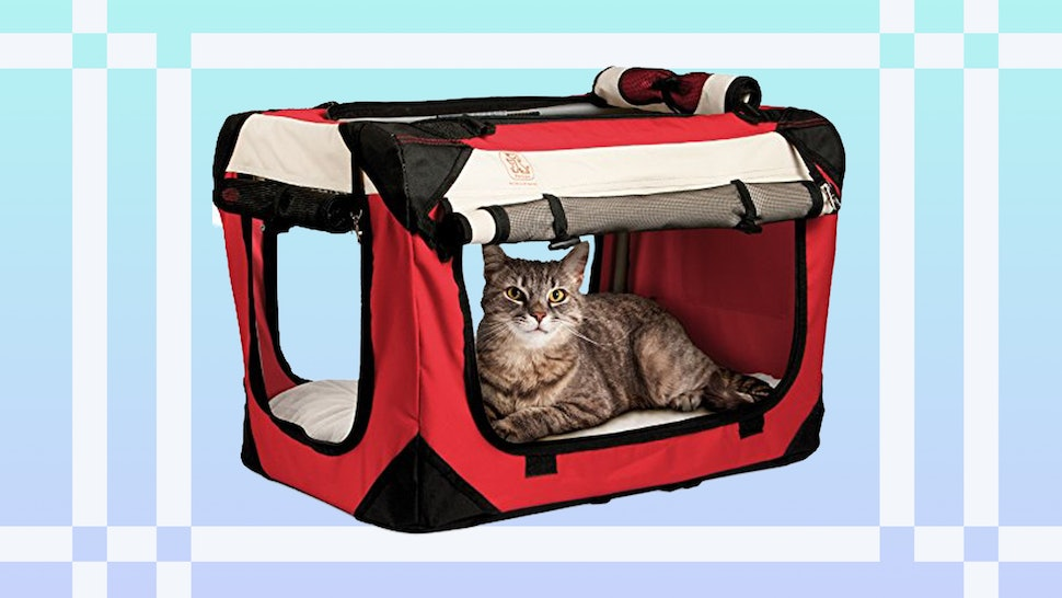 f9d03bb0ad The 6 Best Cat Carriers For Cars
