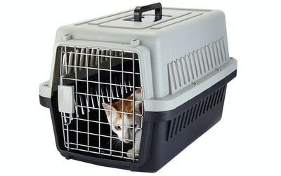 Yvettevans Portable Top-Load Pet Kennel