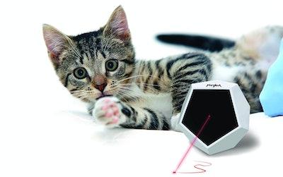 Felix and Fido Playdot! Cat Laser Toy