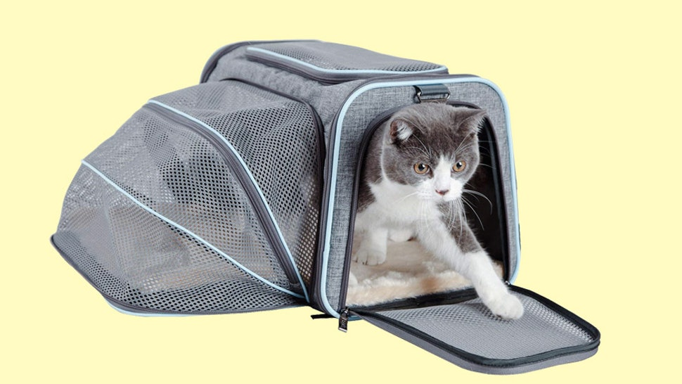The 6 Best Airline Approved Cat Carriers