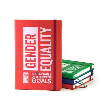 Gender Equality Notebook