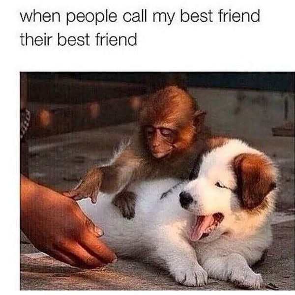 10 Best Friend Memes For National Best Friends Day 2018 That Are