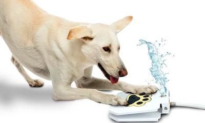 TrioGato Outdoor Dog Sprinkler